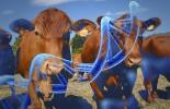 animales, Genética, reproducción, bovinos, eficiencia reproductiva, biotecnología, inseminación artificial, Superovulación, transferencia de embriones, producción de embriones, Alimentos, inocuidad, CRISPR, ADN, genes, enfermedades, Ganadería, ganadería colombia, noticias ganaderas colombia, CONtexto ganadero.
