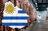 ganadería, ganadería colombia, noticias ganaderas, noticias ganaderas colombia, contexto ganadero, uruguay, ganadería uruguay, exportaciones carne uruguay, carne uruguay a china, carne uruguay a turquía, ganado en pie uruguayo a turquía,