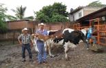 Ganadería, ganadería colombia, noticias ganaderas, noticias ganaderas colombia, CONtexto ganadero, méxico, seguridad alimentaria méxico, carne, abastecimiento de carne, mexico carne, ganaderos mexicanos