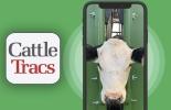 Aplicación Reconocimiento facial vacas, ganado bovino, CattleTracs, mooofarm, facial recognition, tecnología de reconocimiento facial de vacas, reconocimiento facial de las vacas para medir estado de salud, nueva tecnología de reconocimiento facial de vacas, ganaderos, ganaderos colombia, ganado, bovinos, Ganadería, ganadería colombia, noticias ganaderas, noticias ganaderas colombia, CONtexto ganadero, contextoganadero