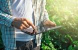 Ganadería, ganadería colombia, noticias ganaderas, noticias ganaderas colombia, CONtexto ganadero, alcance revolucion digital del agro, revolucion digital del agro, herramientas digitales agro, tecnología agro, start-ups agro
