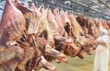 carne paraguay, exportaciones carne paraguay, exportaciones carne bovina Paraguay 2021, ventas carne Paraguay, exportaciones carne Paraguay 2021, exportaciones carne bovina, exportaciones carne Latinoamérica, carne bovina paraguay, ganado bovino, ganadería bovina, ganaderos, ganaderos colombia, ganado, vacas, vacas Colombia, bovinos, Ganadería, ganadería colombia, noticias ganaderas, noticias ganaderas colombia, CONtexto ganadero, contextoganadero