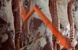 Asociación Española de Productores de Vacuno de Carne, Asoprovac, Estrategia De la granja a la mesa, Comisión Europea, De la granja a la mesa ganadería, Unión Europea, producción carne Unión Europea, Ganadería Sostenible, ganadería baja carbono, ganadería carbono, Bienestar Animal, ganado bovino, ganadería bovina, carne, leche, ganaderos, ganaderos colombia, ganado, vacas, vacas Colombia, bovinos, Ganadería, ganadería colombia, noticias ganaderas, noticias ganaderas colombia, CONtexto ganadero, contextogana