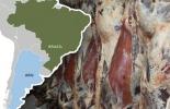 Comercio internacional de carne bovina, exportaciones de carne de res en el mundo, exportaciones carne, Brasil, Argentina, Estados Unidos, Nueva Zelanda, Australia, importaciones de carne de res de China, mercado mundial de carne, ganado bovino, ganadería bovina, carne, leche, ganaderos, ganaderos colombia, ganado, vacas, vacas Colombia, bovinos, Ganadería, ganadería colombia, noticias ganaderas, noticias ganaderas colombia, CONtexto ganadero, contextoganadero