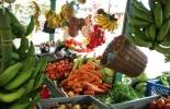 Mercados campesinos en Colombia