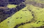 Una región deforestada de la Amazonía en Brasil  © AFP Antonio Scorza