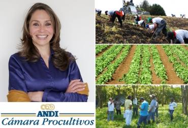 María Helena Latorre Castañeda, directora ejecutiva de la Cámara de Procultivos de la Andi