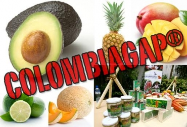 COLOMBIAGAP®, COLOMBIAGAP® noticias, COLOMBIAGAP® lanzamiento, COLOMBIAGAP® cifras, COLOMBIAGAP® cci, COLOMBIAGAP® minagricultura, CONtexto ganadero