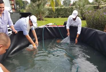 La geomembrana una opci n para la piscicultura contexto for Estanques de geomembrana para tilapia