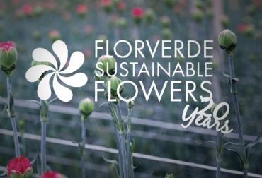flores colombia, flores asocolflores colombia, cifras flores colombia, solano flores colombia, CONtexto ganadero