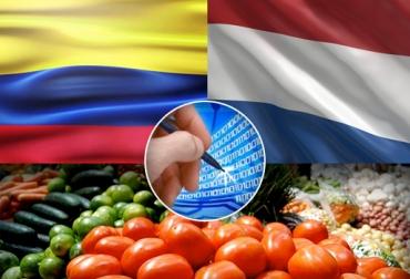 Holanda colombia ica comercio electrónico, Holanda colombia ica comercio electrónico fechas, programa Holanda colombia ica comercio electrónico, Holanda colombia ica comercio electrónico noticias, CONtexto ganadero
