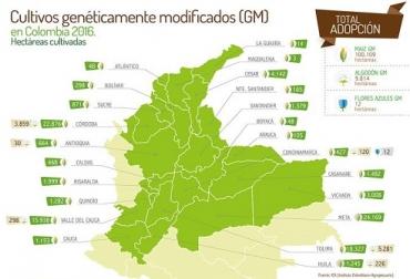 transgénicos, transgénicos en colombia, crecimiento de los cultivos transgénicos, crecimiento de los transgénicos en el mundo, Agro-Bio, contexto ganadero, ganadería colombia, agricultura colombia