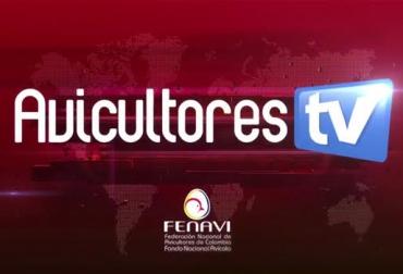 Fenavi, fenavi colombia, avicultores, avicultores colombia, producción avícola colombia, canal youtube, canal youtube fenavi, sector avícola, cría de aves, contexto ganadero, ganadería colombia