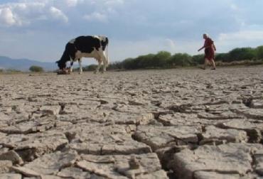 Conozca las principales causas de la degradación de la estructura del suelo, FAO, El valor del suelo, CONtexto ganadero, ganadería Colombia, Noticias ganaderas Colombia