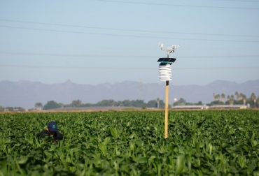 México, DuPont Pioneer, Luxelare, agricultura de precisión, unión DuPont Pioneer Luxelare para desarrollar agricultura de precisión, Sinaloa, estaciones meteorológicas, drones, CONtexto ganadero, ganadería Colombia, Noticias ganaderas Colombia