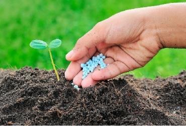 deficiencia de nutrientes, agricultura, Agricultura baja en emisiones, nutrientes del suelo, ¿Por qué es tan importante reponer los nutrientes de los suelos? impacto medioambiental, reducción de gases de efecto invernadero y su impacto al pH de los suelos, el calentamiento global, hoy se promueve el uso de la urea sobre los nitratos, huella de carbono, agricultura sostenible, Ganadería, ganadería colombiana, noticias ganaderas, noticias ganaderas Colombia, CONtexto ganadero