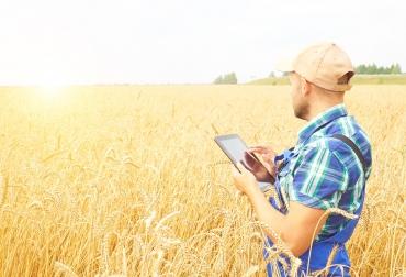 ganadería, ganadería colombia, noticias ganaderas, noticias ganaderas colombia, contexto ganadero, internet de las cosas, IoT, HughesNet, HughesNet colombia, roque lombardo, cobertura HughesNet, internet en el campo, internet satelital, internet colombia,