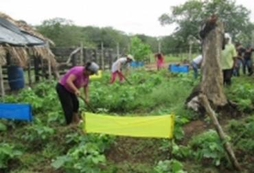 Colombia, Agenda de las Mesas Técnicas Agroclimáticas, contexto ganadero, noticias ganaderas, agrícola, vacas