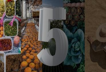 Ganadería, ganadería colombia, noticias ganaderas, noticias ganaderas colombia, CONtexto ganadero, Think 2019, suministro de alimentos, Decision Platform for Agriculture, internet de las cosas, blockchain, IA, Food Trust, IoT, tecnología de Secuenciación de Segunda Generación, seguridad alimentaria , inteligencia artificial, E.Coli, Salmonella, infobae,