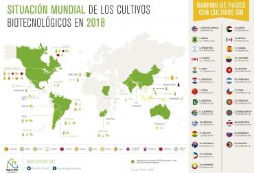 Ganadería, ganadería colombia, noticias ganaderas, noticias ganaderas colombia, CONtexto ganadero, cultivos transgénicos, Servicio Internacional de Adquisición de Aplicaciones de Agrobiotecnología, ISAAA, consultora inglesa PG Economics, crecimiento de los transgénicos, 4.7 millones de hectáreas de transgénicos en 2019, cultivos de maíz, algodón genéticamente modificados, Colombia, transgénicos Colombia, maría andrea uscátegui, directora ejecutiva de Agro-Bio