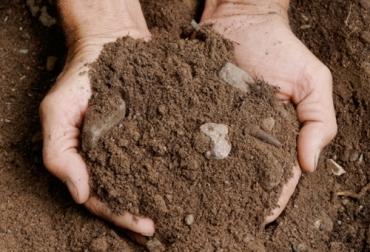 Calidad suelo, tarjeta evaluación calidad suelo, características suelo, evaluación cualitativa del suelo, evaluación cuantitativa del suelo, tarjeta evaluación, diagramación de la parcela, calidad suelo, uso del suelo, CONtexto ganadero, ganadería colombia, noticias ganaderas colombia