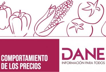 DANE, control de precios, Alimentos, cuarentena, leche, queso, papa, cebolla, supermercados, tiendas, variación, Ganadería, ganadería colombia, noticias ganaderas colombia, CONtexto ganadero
