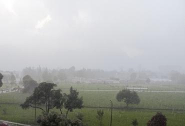boletín semana sector agrícola, IDEAM, Ganadería, ganadería colombia, noticias ganaderas, noticias ganaderas colombia, CONtexto ganadero, pronósticos Ideam, clima, clima colombia, clima colombia 2021, pronósticos ideam 2021, clima enero 2021
