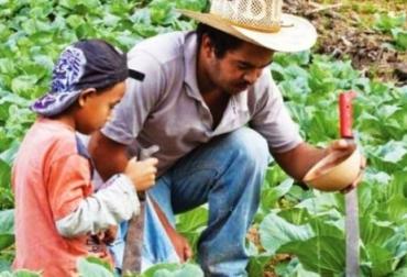 Programa de Agricultura Familiar