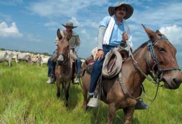 Censo agropecuario Colombia