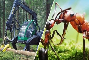 Biomimética tecnología