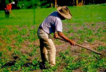 Encuesta de Opinión Empresarial Agropecuaria