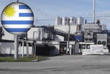 Grupo Gloria, propietario de la empresa Ecolat, abrir las puertas de su planta, CONtexto ganadero, noticias de ganadería bovina.