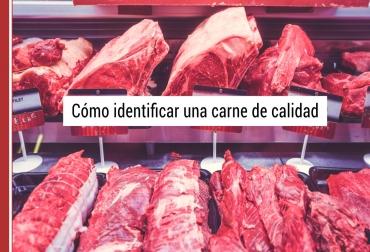 caracteristicas organolepticas de la carne, calidad carne, carne vacuna, calidad carne vacuna, calidad carne de res, carne de res, caracteristicas carne