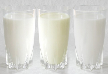 leche de soja se considera lacteo