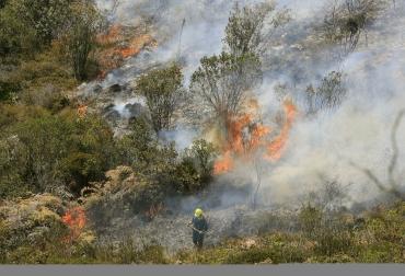 Incendios en Coyaima