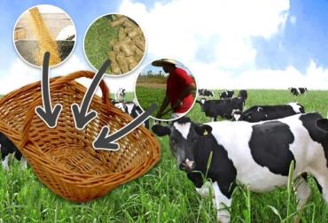 ganado de leche