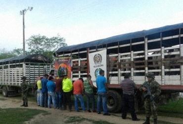 Contrabando de ganado de Venezuela