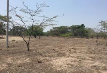 Verano en La Guajira