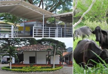 finca hacienda El Encinar de Mamrre colombia