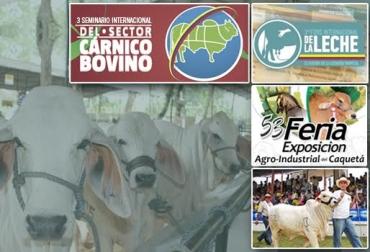 ferias ganaderas, eventos ganaderos, foros, seminarios, leche, carne, ganado, razas