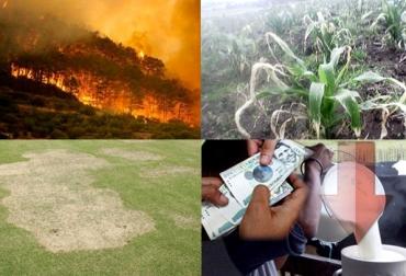 Boyacá, Cundinamarca, Incendios, Heladas, Deterioro de pastos, Bajo pago leche, CONtexto Ganadero