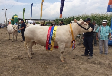 2016 de Agroshow pajonales tolima colombia