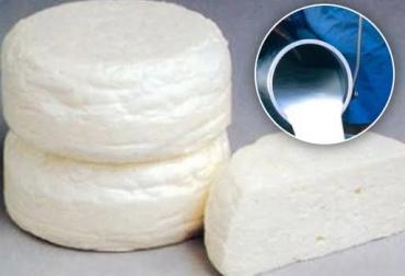leche con residuos de antibióticos