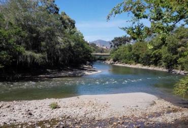 reducción caudal río Suárez, afectación sector ganadero de Santander, reducción producción de leche en Santander, falta de lluvias en Santander