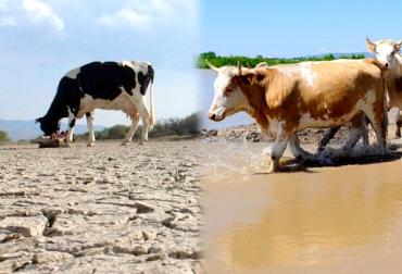 transición de El Niño a La Niña en Colombia, recomendaciones para invierno y verano en Colombia, pasos a tener en cuenta durante El Niño y La Niña