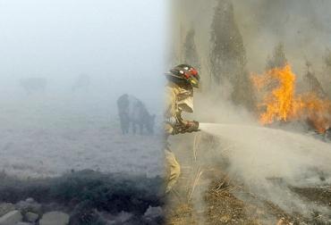 cambios climáticos afectan sector ganadero de Santander, incendios, Heladas, lluvias y sequía afectan sector ganadero de Santander, ganadero y productores de Santander preocupados por el cambio climático