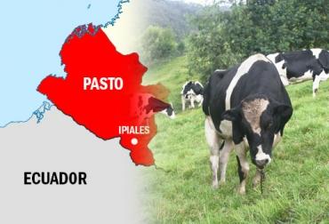 Falta de control promueve el contrabando, contrabando de ganado desde Nariño a Ecuador, precio del dólar promueve el contrabando hacia Ecuador