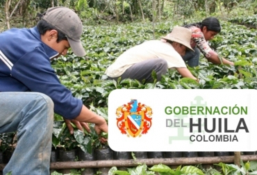 programa en beneficio de los empresarios del campo, gobernación del Huila le apuesta a los empresarios del campo