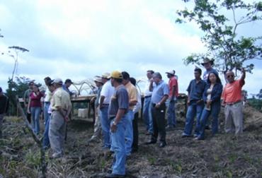 fortalecimiento de la asociatividad, ganadería en colombia, ganaderos de colombia, fedegán administrador del fng, Fiduagraria administrador del FNG