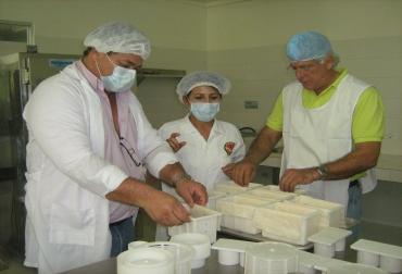 queso costeño, queso costeño colombia, queso costeño noticias, procesos queso costeño, estudios queso costeño, contexto ganadero